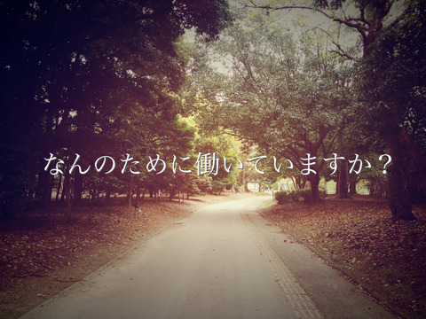 IMG_8378_Fotor
